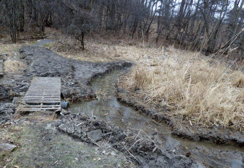One of the results of the maintenance day was this trench past the C nets to reduce flooding of the census trail; the next step will be to replace the old boardwalk (Photo by Marcel Gahbauer)